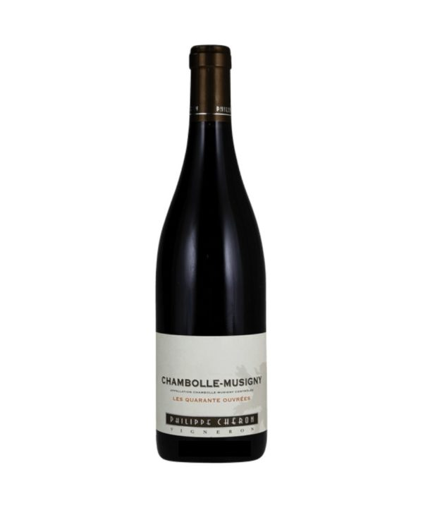 cws11264 domaine philippe cheron chambolle musigny les 40 ouvrees 2015