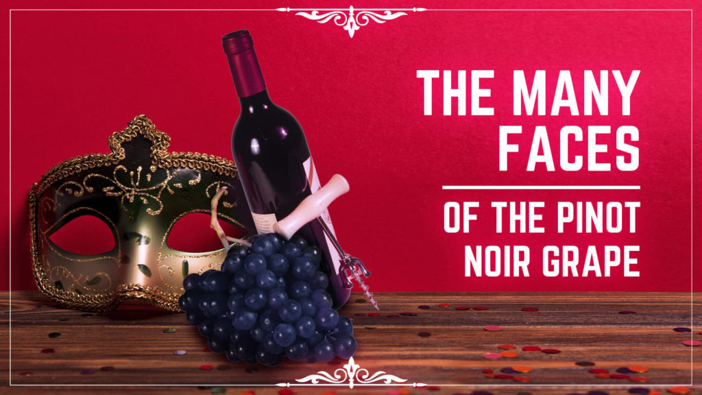 the many faces of the pinot noir grape
